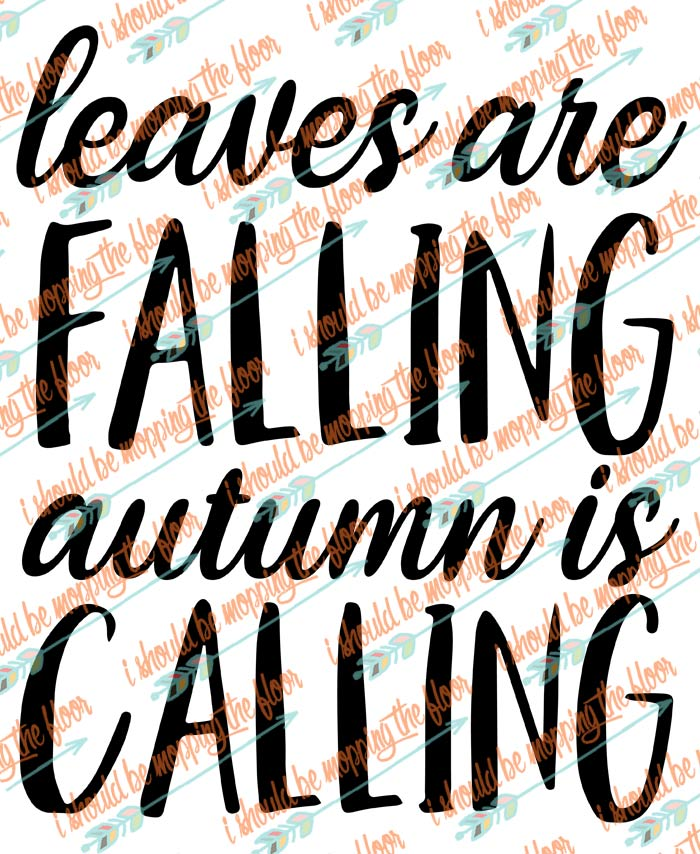 Free Leaves are Falling Autumn is Calling SVG