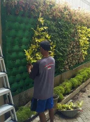 Tukang Taman Vertikal Garden | Jasa Pembuatan Taman Vertikal | Jasa Pembuat Vertikal Garden di Bogor - Tukang Rumput Bogor