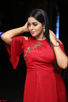 Poorna in Maroon Dress at Rakshasi movie Press meet Cute Pics ~  Exclusive 70.JPG