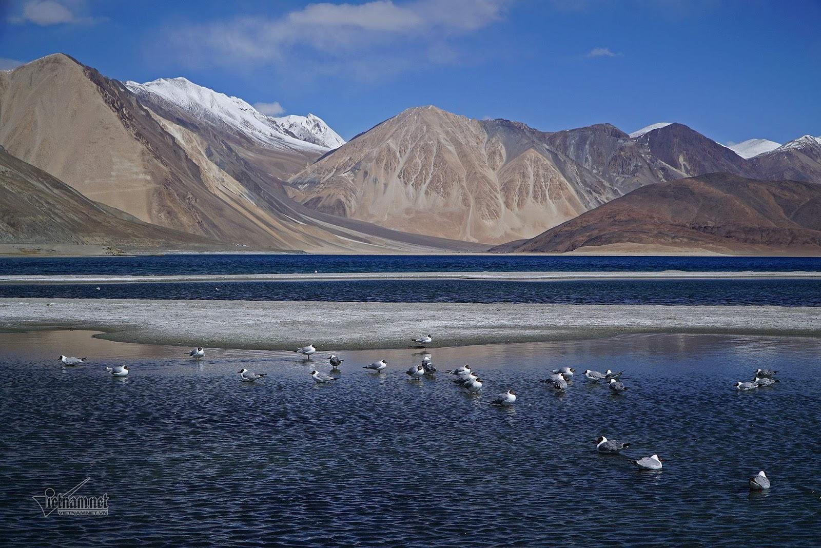 Khám phá vẻ đẹp huyền bí hồ Pangong - Ảnh 8