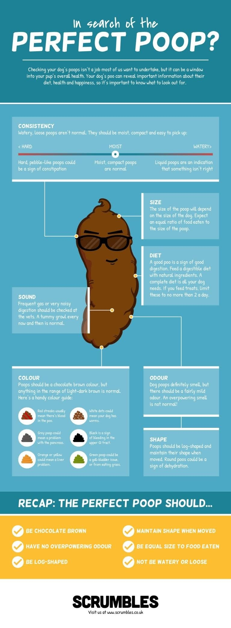 Healthy Dog Poop Chart: In Search of the Perfect Poop #infographic