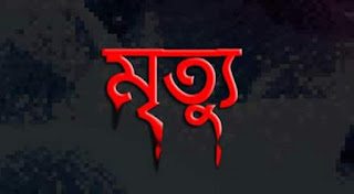 শৈলকুপা উপজেলা বি এন পি নেতার দাদির মৃত্যু