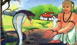 Image result for brahmin and cobra