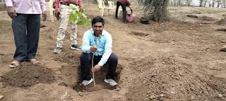 लोक जन कल्याण समिति द्वारा पौधे लगाकर पर्यावरण दिवस मनाया
