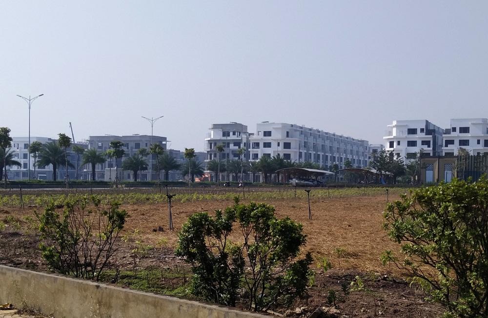 View Him Lam Green Park từ quỹ đất xây dựng Trung Tâm Thương Mại Lotte