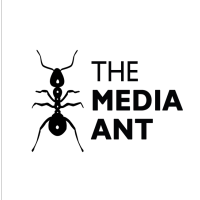 The Media Ant Head Office Address