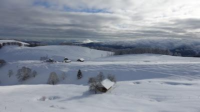 Brunnersberg mit Hof Güggel im Hintergrund