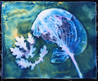 Wet Cyanotype_Sue Reno_Image 67