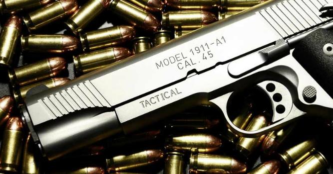 V 2018 03 experto en derecho analisis ley 36 sobre for Porte y tenencia de armas