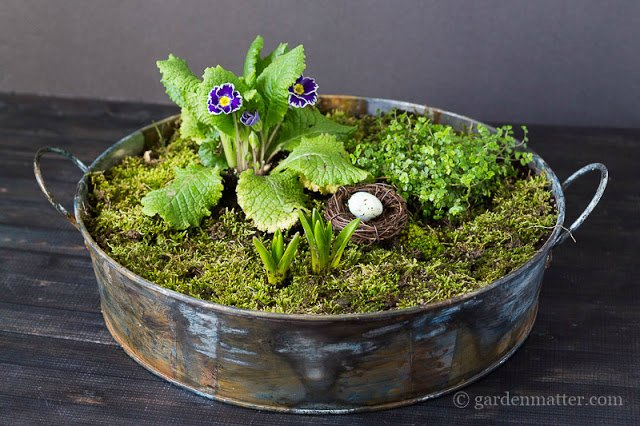 Galvanized Tub Moss Centerpiece on a table with flowers set inside