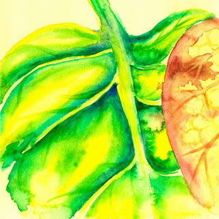 Curled up leaf watercolor painting