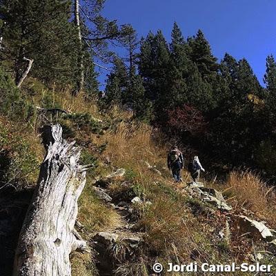 Camino de Montcasau