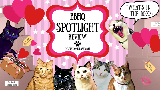 Valentines What's In The Box on BBHQ Spotlight Review @BionicBasil®