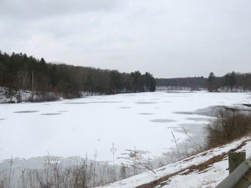 Swan Creek Pond