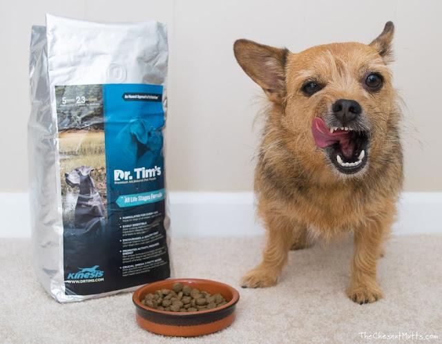 Mini Review: Dr. Tim's Kinesis Dry Dog Food