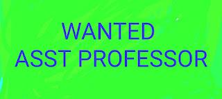 WANTED ASST PROFESSORS  PROGRAMMER OFFICE CLERK