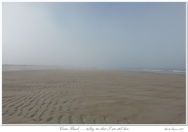 Crane Beach: ... telling me that I am still here...