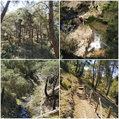 Pessas springs small waterfalls in Levos Mytilene