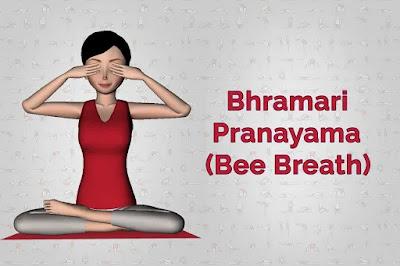 mergezone_Bhramari pranayama