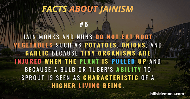 jain vegetarian lifestyle do not eat any root vegetables  jainism teachings