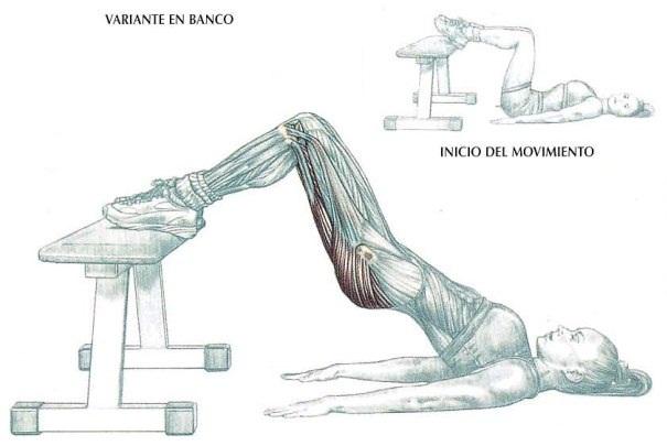 Elevación de la pelvis en el suelo con los pies apoyados sobre un banco, ejercicio para glúteo | Rane Forti