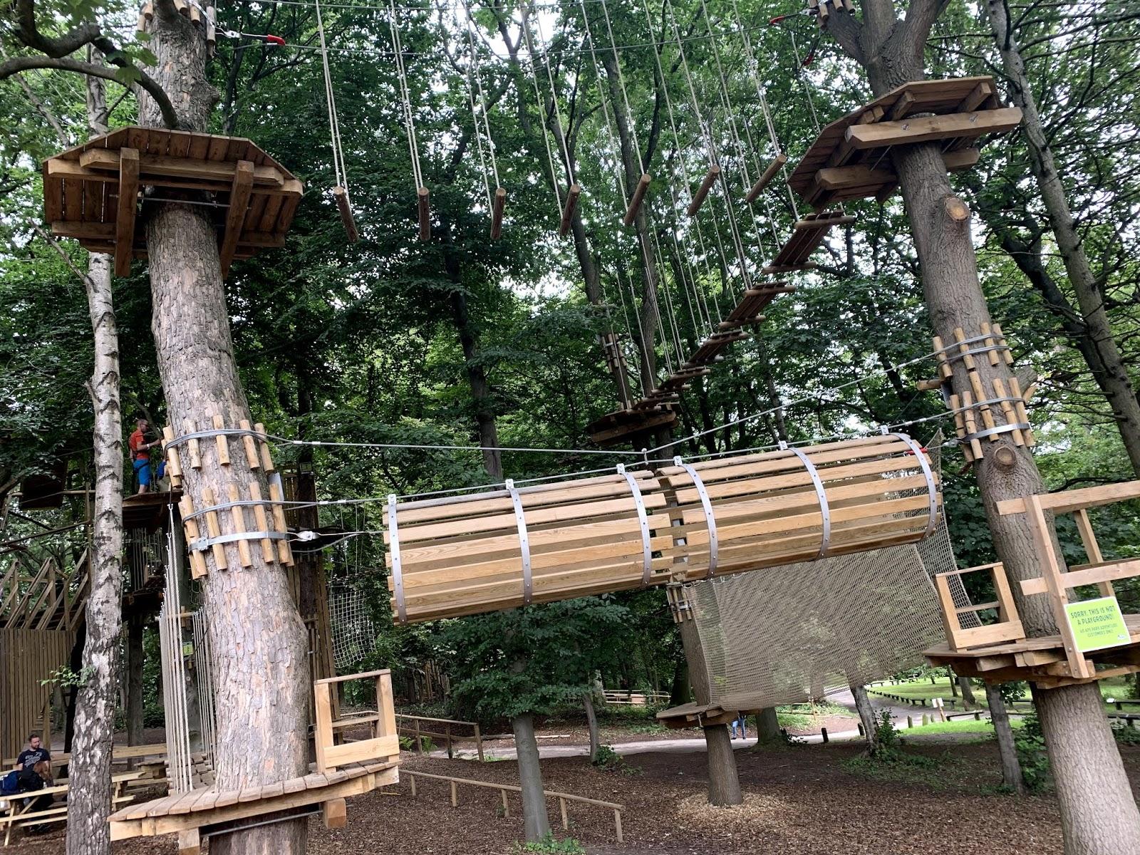 go-ape-treetop-adventure