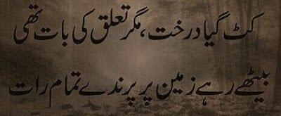 Poetry | Urdu Poetry | 2 Lines Poetry | Love Poetry | 2 Lines poetry pics | Poetry images | 2 lines shayari - Urdu Poetry World,Urdu poetry about death, Urdu poetry about mother, Urdu poetry about education, Urdu poetry best, Urdu poetry bewafa, Urdu poetry barish, Urdu poetry for love, Urdu poetry ghazals, Urdu poetry Islamic