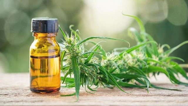 DOT issues warning about use of CBD products