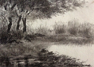 Charcoal study work of a landscape from Bharatpur Bird Sanctuary by Manju Panchal