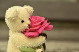 Pantun Cinta Romantis dan Lucu