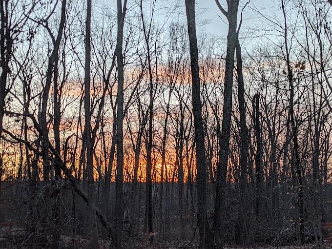 Appreciating a February Sunrise
