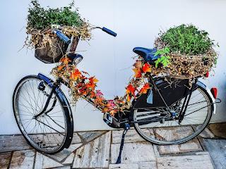 Bike Rust Old Flowers Recycling Scrap Turned Off Bisiklet Asma Bitkisel Sepet Bisiklet Bağbozumu Sonbahar Bisiklet Bisiklet Bisikletçi Şafak Alacakaranlık Adam Açık Havada Bisiklet Bisiklet Rahat Moda Model Açık Kişi Bisiklet Bisiklet Sepeti Çiçek Sepeti Gidon Bisiklet Bisiklet Tesisleri Tencere Yaprakları Çalışma Penceresi Bisiklet Bisiklet Yeşil Spor Duvar Jantlar Retro Eski Bisiklet Bisiklet Çiçek Orman Doğa Sonbahar Yaprakları Bisiklet Dekore Eski Ekili Yeşil Açık Havada Tasarım Bisiklet Ile Kadın Bisiklet Bisiklet Köpek Yaz Bisiklet Olgun Bayan Bisikleti Yakın Çekim Işlemeli Yün Bisiklet Pas Eski Çiçekler Hurda Geri Dönüşüm Kapalı Bisiklet Paslı Büyümüş Dekorasyon Örümcek Ağları Eski Bisiklet Renkli Bisiklet Döngüsü Bisiklet Tekerleği Bisiklet Scooter Bağbozumu Kız Taşıma Tekerleği Bisiklet Sepeti Taşıma Bisiklet Bahçe Çim Sürüş Bisiklet Sürme Bulutlar Bisiklet Binmek Eğlence Döngüsü Mutlu Bisiklet Velo Jantlar Bisiklet Renk Renkli Boyalı Bisiklet Yaz Sepet Çevrimi Binmek Bayanlar Döngüsü Bisiklet Çayır Çiçek Çimen Bisiklet Bahar Yeşil Bisiklet Çiçek Sepeti Bisiklet Bağbozumu Retro Bahar Kadın Kız Bisiklet Gün Batımı Yürüyüş Abendstimmung Köpek Kanal Nehir Köprü Bisiklet Ağaç Manzara Delft Kurbağa Bisiklet Komik Sevimli Tatlı Rakam Sürücü Kırmızı Bisiklet Bağbozumu Bisiklet Bisiklet Bisiklet Bağbozumu Kırmızı Bisiklet Kadın Kırmızı Elbise Yaz Bisikleti Açık Motokros Enduro Dalgası Sörfçüler Yarış Motorlu Scooter Park Edilmiş Bina Motorlu Bisiklet Nature Summer Flora Garden Flowers Picnic Romance Pembe Duvar Bisiklet Bisiklet Pencere Kaldırım Dışında  Scooter Moped Erkek Kadın Araç Motor Genç Siluet Bisiklet Fitness Kadın Sportif Sağlıklı Tasarım Tekerlekli Bisiklet Bisikletçi Ulaşım Panoramik Vintage Bisiklet Çiçek Bisiklet Retro Vintage Bisiklet Öğleden Sonra Manzara Manzara Yolu Kız Bisiklet Işık