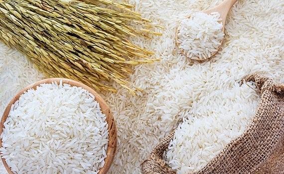 Gạo vàng Kiêng Giang
