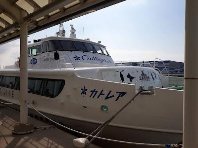 津エアポートラインの高速船