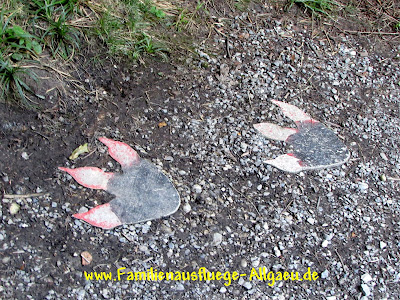 Fußspuren eines Drachen