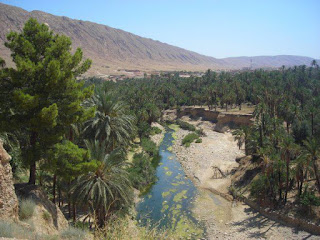 مناظر وصور ولاية بسكرة