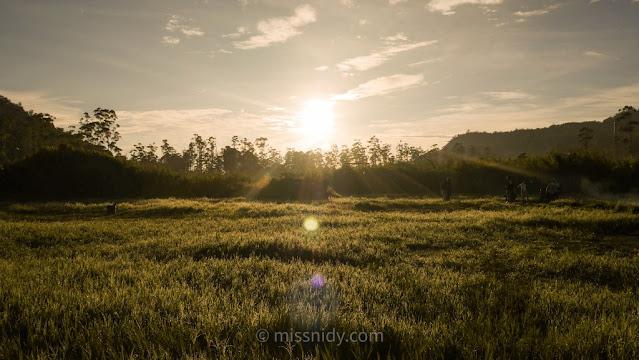 open trip sunrise rancaupas ciwedey