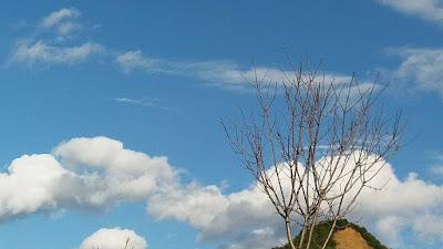Αποτέλεσμα εικόνας για agrinio like ηλιοφανεια