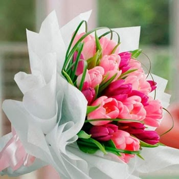 Kumpulan Gambar Buket Bunga Tulip
