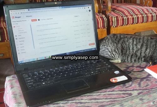 Gambar dari SIMPLYASEP.COM