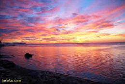Pantai Pink , Pulau Komodo