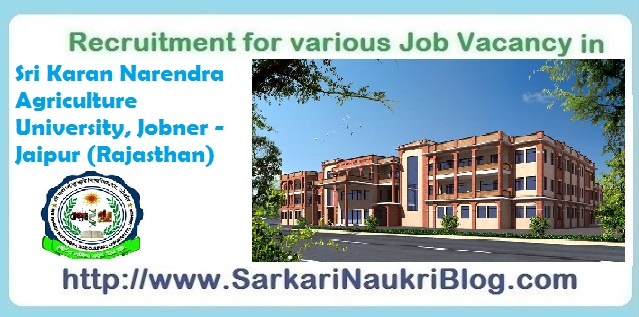 Naukri Job vacancy in SKNAU Jobner Jaipur