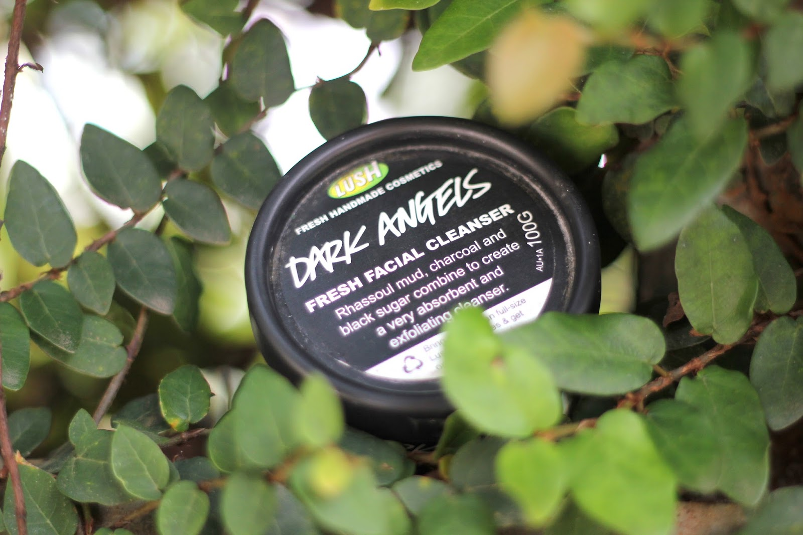 Lush Dark Angels Cleanser Review