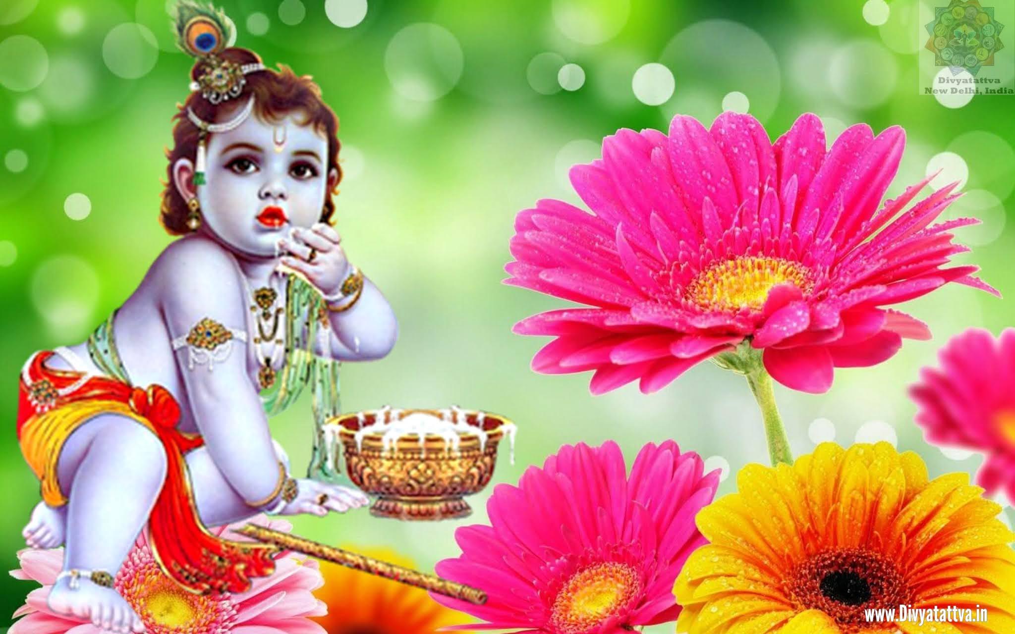 cute little krishna images, baby krishna wallpaper hd, 1080p cute little krishna images hd