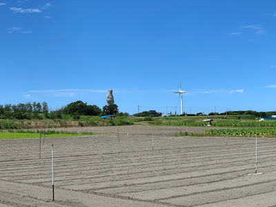 西方の湯付近の畑