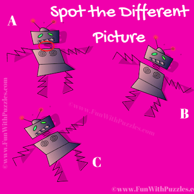 Answer of Spot the Different Bot Picture Puzzle for Teens