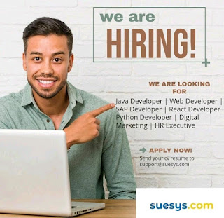 Suesys Jobs 2020 For Developers & Digital Marketing Latest