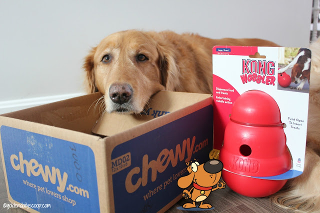 Interactive dog toys chewy review