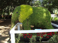 Elephant topiary, Festival of Flowers - Christchurch Botanic Gardens, New Zealand