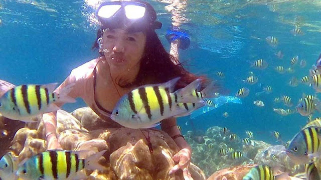 Snoorkling Wisata Kepulauan Mandeh